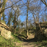 A Nature Walk Around Turls Hill, Sedgley