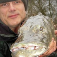 Pike Fishing On The River Severn - A Walk Down Angling's Memory Lane