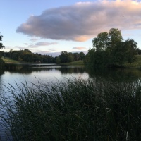 Tench Fishing In Shropshire - Confident But Always Realistic