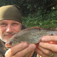 Fishing The Staffordshire / Worcestershire Canal