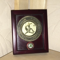 Welsh Premier League Champions Winners' Medal 2006/2007